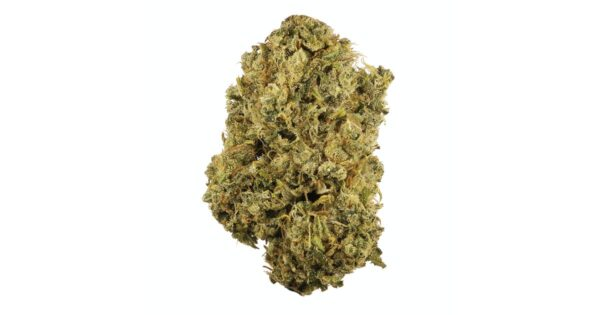 buy durban poison online, where to buy weed online, how to buy weed in denmark, buy durban poison strain, buy burban poison online Germany